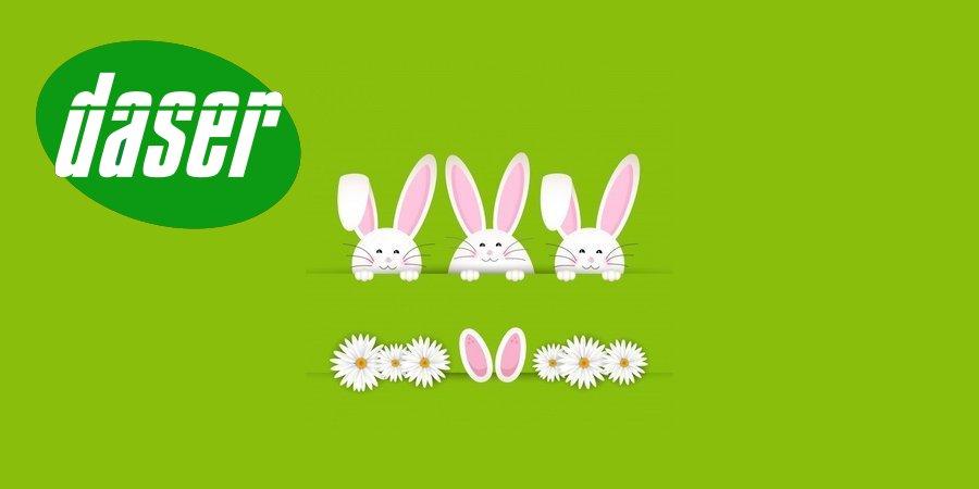 sfondo di pasqua coniglio con le margherite - Buona Pasqua 2018